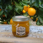 Bradshaw Honey Farms-Orange Blossom Honey-22oz Mason Jar