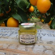 Bradshaw Honey Farms-Orange Blossom Honey-2oz Glass Jar