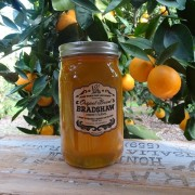 Bradshaw Honey Farms-Orange Blossom Honey-44oz Mason jar